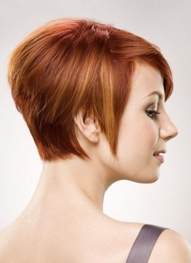 Short Hairstyle with Brown Hair