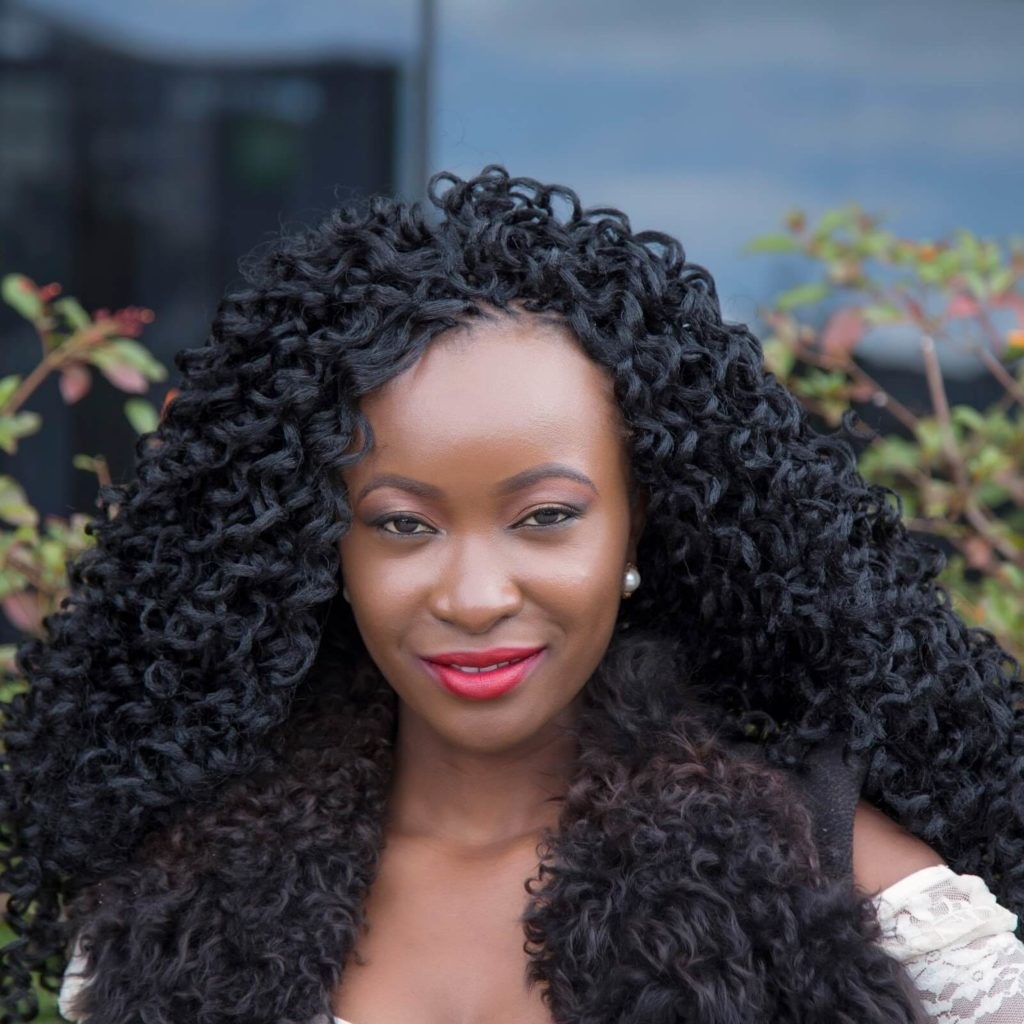 Updos With Braids And Curls: 90 + Crochet Braids Hairstyles