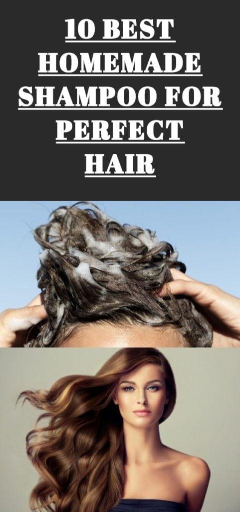 Homemade Shampoo For Perfect Hair